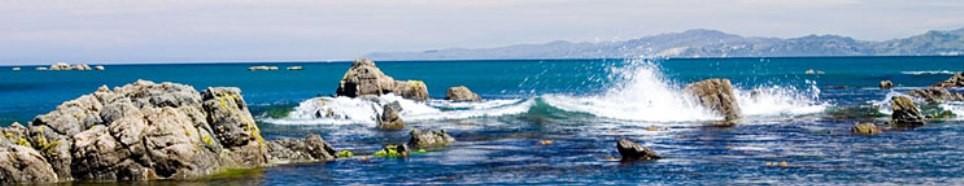 New Zealand: Keeping Its Gates Open