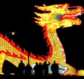 2012, the year of the dragon
