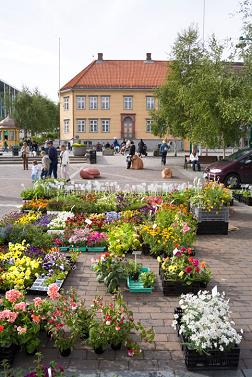 Flower stall at a market in Norwaye