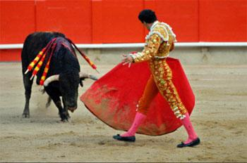 Spanish bullfight attracts visitors from the world over