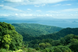 UN REDD: Can the program save our tropical forests?