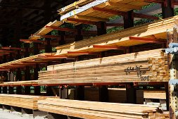 Logs marked for export at a U.S. timber yard