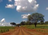 Brazil Road